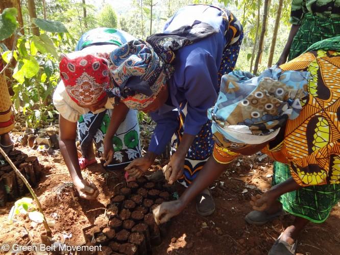 Kiharu Kahuro Womens Group © Green Belt Movement