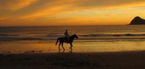 Horseback riding on the Mazatland Shore © Jseens   Dreamstime 1671045