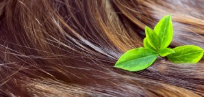 Brown Golden Hair Green Leaves © Jetzt | Dreamstime 33092823