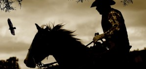 Cowboy horse bird Tree Sepia Silhouette © Customposterdesigns | Dreamstime 28994169