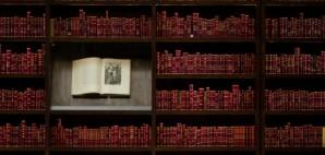Bookshelf © Gogajuice   Dreamstime 48075353