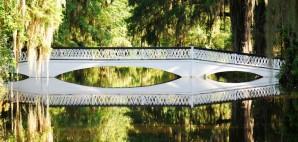 Long White Bridge, Magnolia Plantations, Charleston, South Carolina © Kimberly Lewis   Dreamstime 54609380