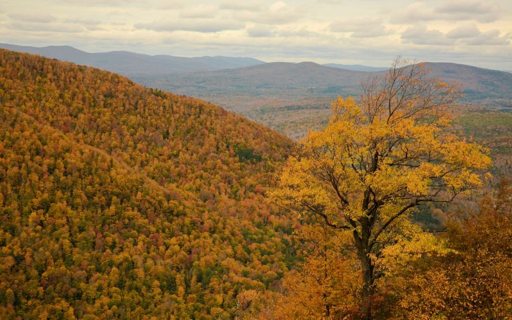 Catskill Mountains, New York © Lev Akhsanov | Dreamstime 27152623