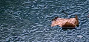 Raining © Jkphoto   Dreamstime 22954996