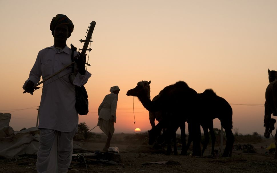 2 Pushkar Camel Fair, Rajasthan, India © Koshy Koshy | Flickr