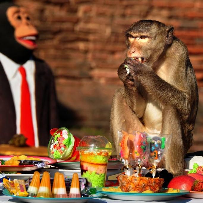 Lopburi Monkey Banquet, Phra Prang Sam Yot, Thailand © Koon Hong Kang | Dreamstime 13517423