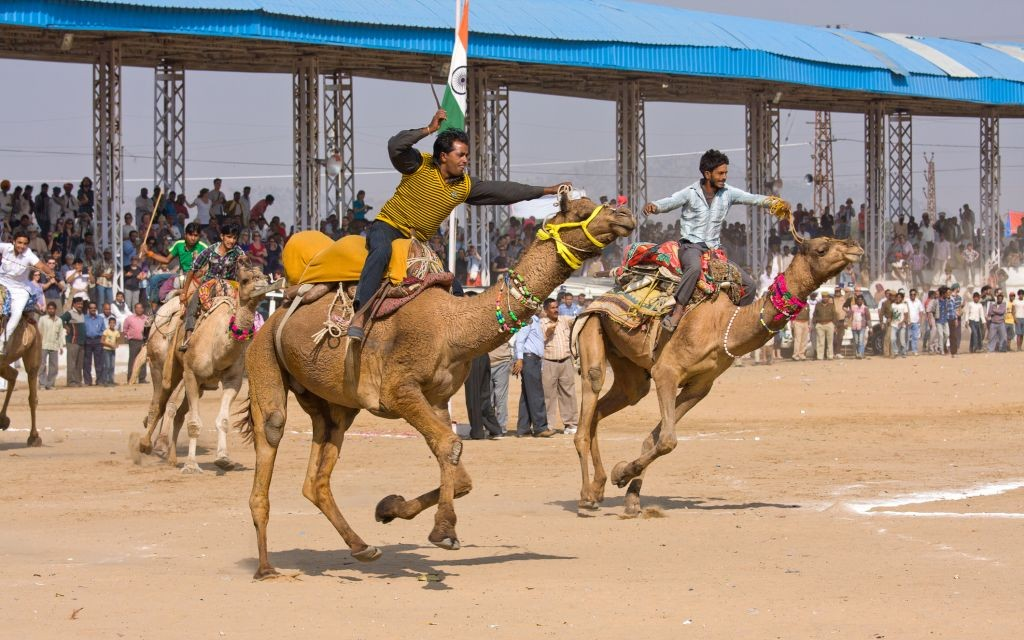 Pushkar Camel Fair, Rajasthan, India © Oleg Doroshenko | Dreamstime 27822572
