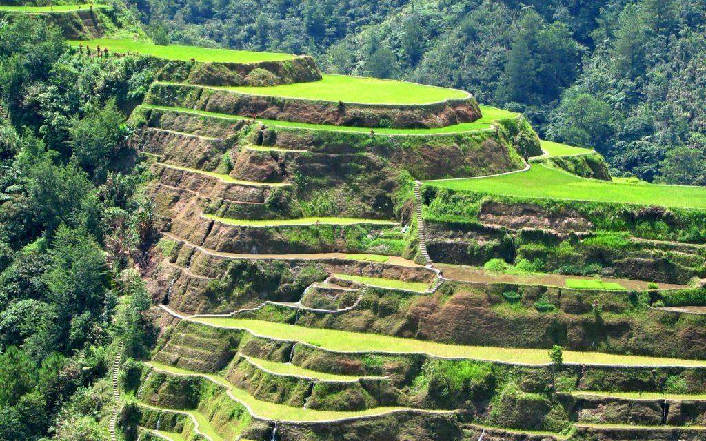 Rice Terraces of Banaue, Philippines © Jonald John Morales | Dreamstime 2513753