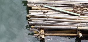Bamboo © Umawadee Rungruengbangchan | Dreamstime 43537137