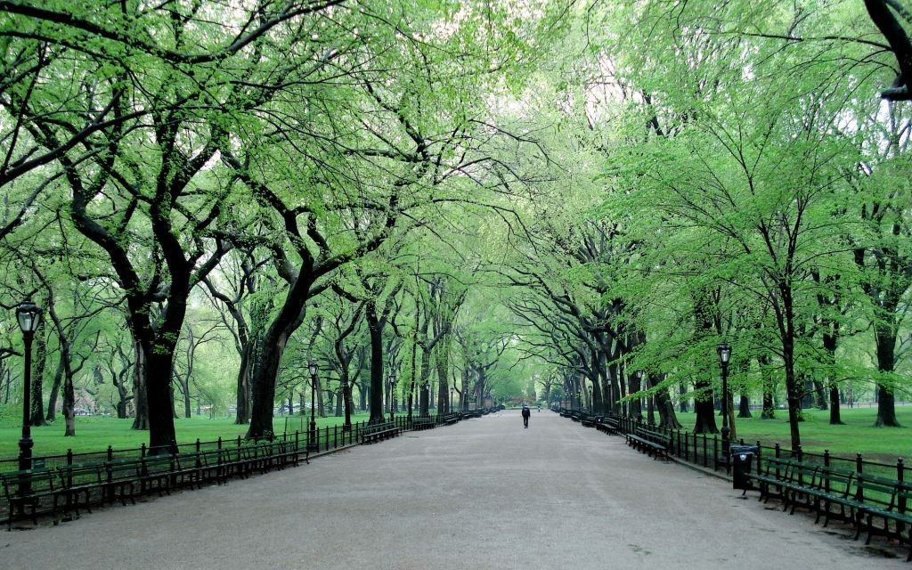 Trazee travel best engagement pic spots in central park for Good time to visit new york
