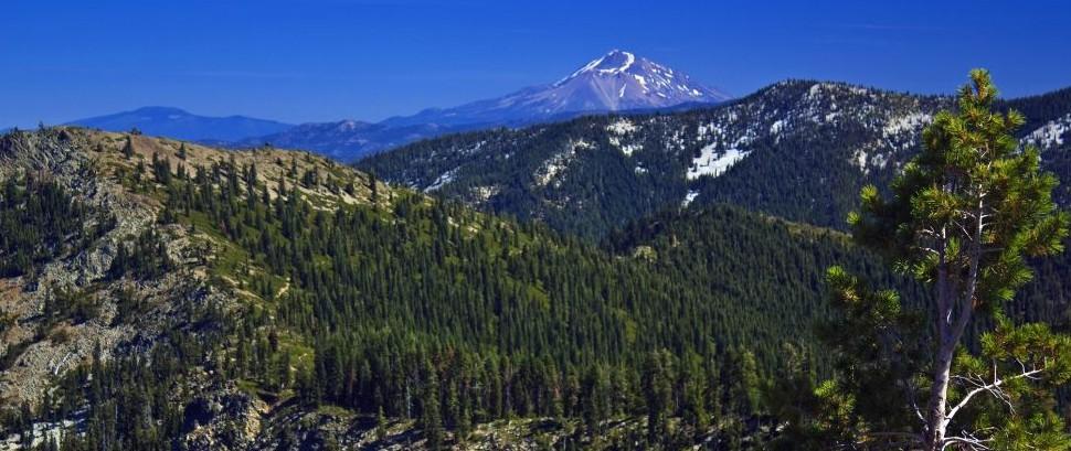 Pacific Crest Trail, California © Clay Shannon | Dreamstime 12168149