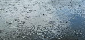 Rain © Antares614 | Dreamstime 14453169
