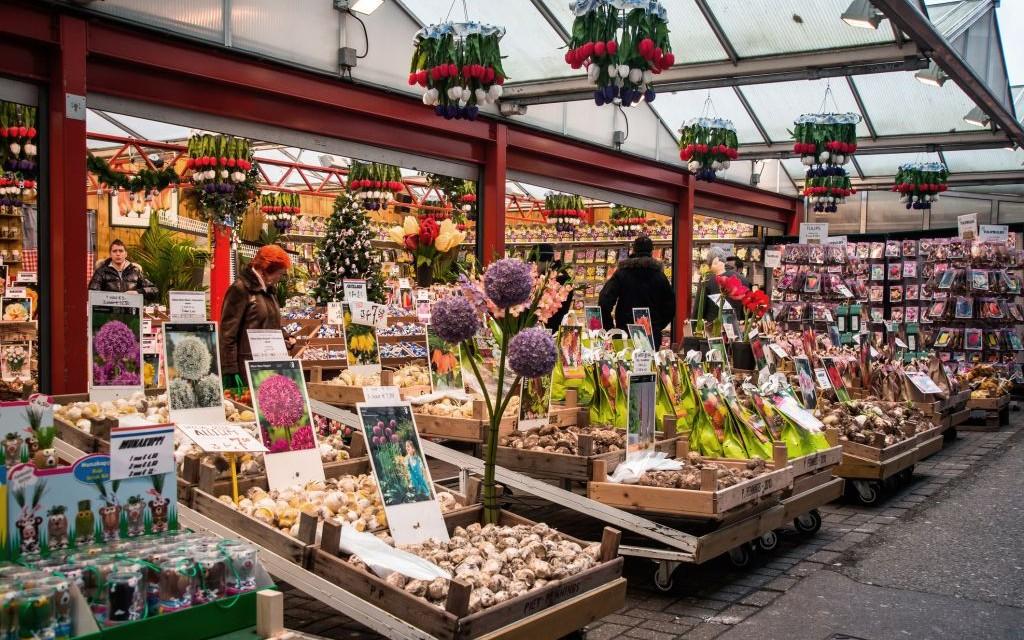Bloemenmarkt, Amsterdam © Denis Polyakov | Dreamstime 68175827