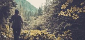 Hiker © Nejron | Dreamstime 44056903