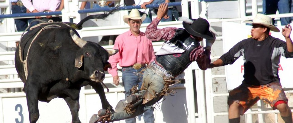 National Finals Rodeo, Las Vegas, Nevada © Daniel Raustadt | Dreamstime 20958156