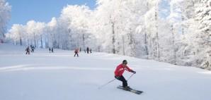 Ski © Victoo | Dreamstime 3933457
