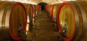 Wine Cellar at Knezevi Vinogradi, Croatia © Deymos   Dreamstime 36641108