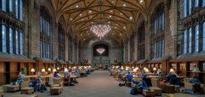 Harper Library, Chicago, Illinois © Glenn Nagel   Dreamstime 35781560