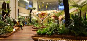 Changi International Airport, Singaport © Tang90246   Dreamstime 54590259