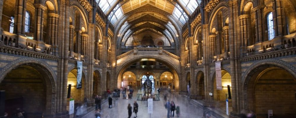 Natural History Museum, London, England © Roland Nagy | Dreamstime 8087808