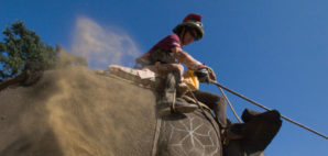 Elephant Polo in Nepal © Patrice Correia | Dreamstime 52071815