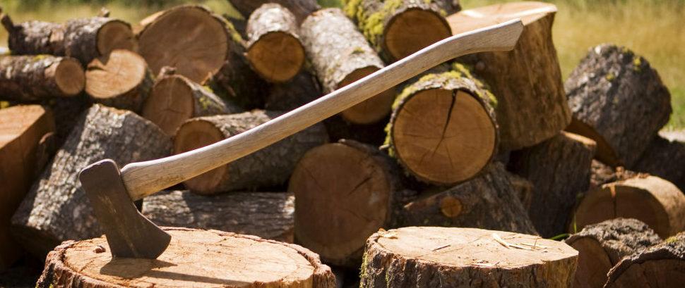 Wood Axe © Matthew Ragen | Dreamstime 3607509