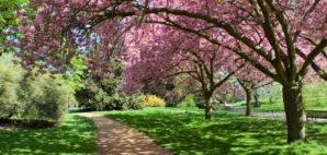 Hyde Park, London, England © Rui Vale De Sousa | Dreamstime 33664522