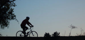 Mountain Bike © Mark Rasmussen | Dreamstime 274117