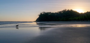 Samara Beach, Costa Rica © Mario Gyss | Dreamstime 66676592