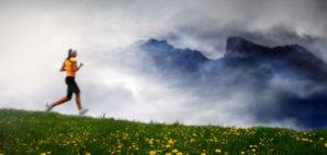 Trail Running © Mikael Damkier | Dreamstime 4049139