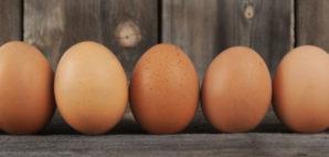 Eggs © Marilyn Gould | Dreamstime 30641044