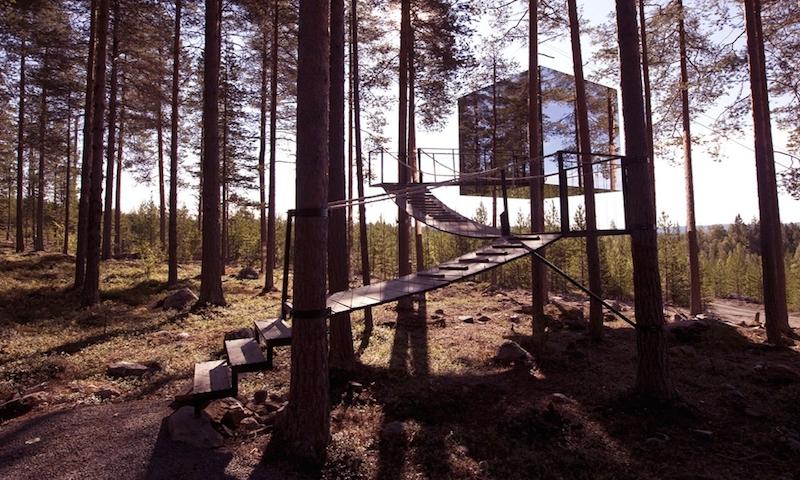 Treetop hotels
