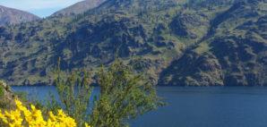 Lake Chelan © Claregiu | Dreamstime