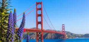 San Francisco © Lunamarina   Dreamstime