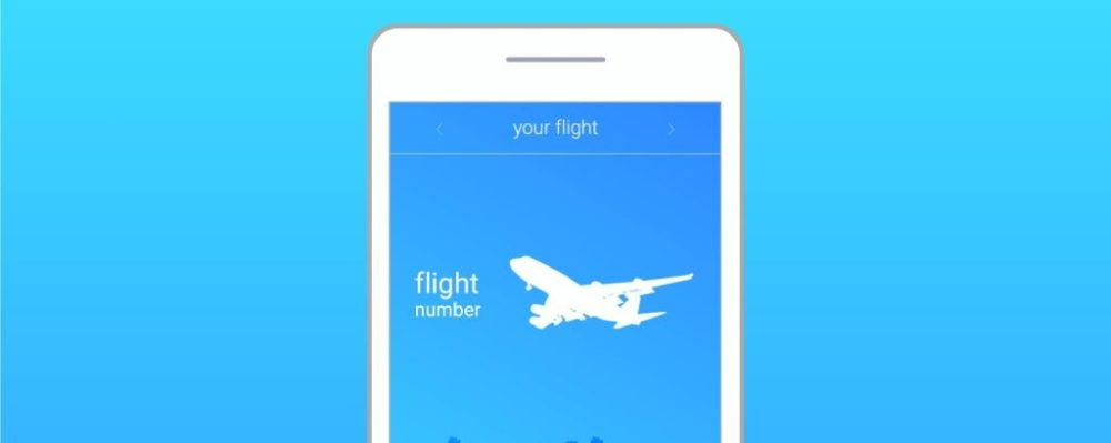 flight app © Yana Viniukova | Dreamstime