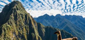 Peruvian Andes © Pixattitude   Dreamstime