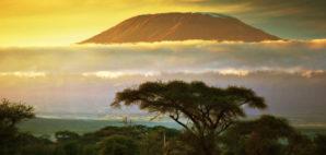 Kenya © Michal Bednarek | Dreamstime