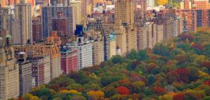 Central Park © Serban Enache   Dreamstime