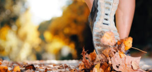 autumn © Warrengoldswain | Dreamstime