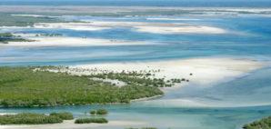 Mozambique © Ecophoto | Dreamstime
