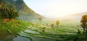 Bali © Mikhail Dudarev | Dreamstime.com