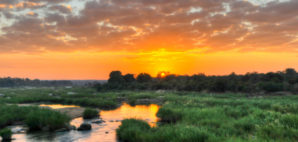 Kruger National Park © Demerzel21 | Dreamstime.com