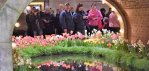 Philadelphia Flower Show © Seashell317 | Dreamstime.com
